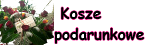 buk_ok_ko_po_2