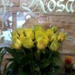 Kwiaty 16
