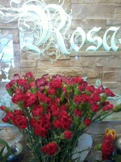 Kwiaty 20