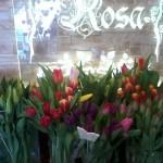 Kwiaty 6