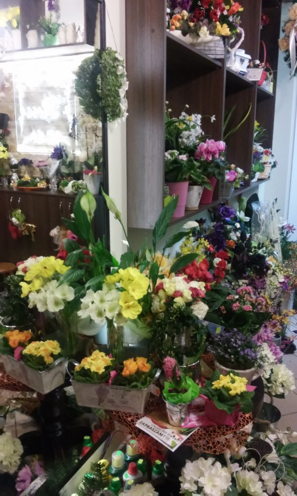 Nasza kwiaciarnia 16