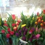 Kwiaty 7