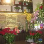 Nasza kwiaciarnia 4