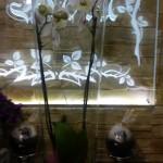 Kwiaty 25