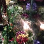 Nasza kwiaciarnia 12