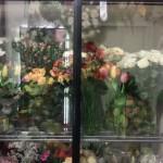 Nasza kwiaciarnia 15