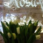 Kwiaty 50