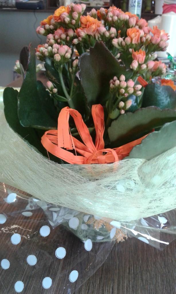 Kwiaty 58